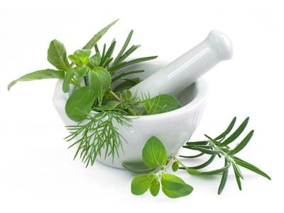 Traditional medicine-herbal medicines