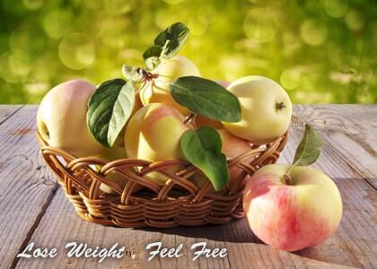پکیج کاهش وزن گل شفا